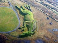 How many likes for this amazing creativity, it's garden with horse shape. top work ever. please like and share it to your timeline & friends: http://pinterest.com/travelfoxcom/pins/