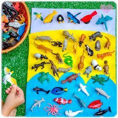 Montessori Toddler, Sorting Activities, Animal Activities, Preschool Learning Activities, Toddler Play, Infant Activities, Preschool Activities, Kids Learning, Montessori Bedroom