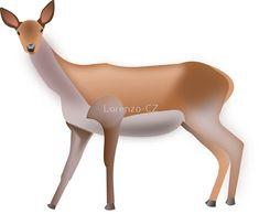 'deer doe' by Lorenzo-CZ Chiffon Shirt, Chiffon Tops, Skin Case, Long Hoodie, Laptop Sleeves, Decorative Throw Pillows, Deer, Classic T Shirts, Decorative Pillows