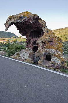 La tomba a Domus de Janas roccia dell'Elefante- Castelsardo Elephant Rock - Castelsardo -Sardegna, Sassari