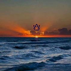 "As far as the eye can see, ""WarDamnEagle! Football War, Football Rules, Auburn Football, Football Season, College Football, Auburn Memes, Auburn Vs, Auburn Tigers, Auburn Quotes"