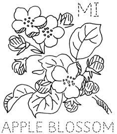 Michigan Apple Blossom | Flickr - Photo Sharing!