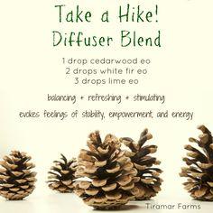 Take a Hike Essential Oil Diffuser Blend - tiramarhomestead.com