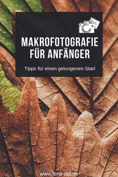 natur fotographie 7 useful tips for beginners in macro photography Photography Tips Iphone, Portrait Photography Tips, Photography Tips For Beginners, Nikon Photography, Creative Photography, Nature Photography, Travel Photography, Family Photography, Empire Ottoman
