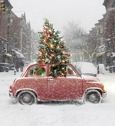 car filled with Christmas spirit