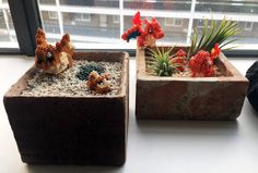 Window Sill Pokemon Garden - Album on Imgur