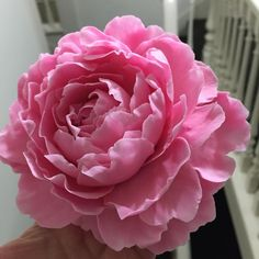 Practicing my peonies for a class I have this weekend at kiwicakes in Whangarei. This was made all freeform with a plastic bag and spoons.. i love making peony petals as they are all different so they keep you on your toes lol!