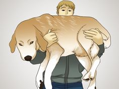 How to Help Your Dog Lose Weight -- via wikiHow.com