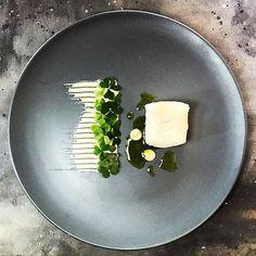 Poached cod in dill, dill oil, hazelnut purée & oxalis. Uploaded by talented Nick @royalebrat #gastroart