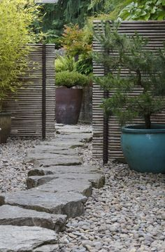 bamboo fence - 43 Awesome Garden Stone Paths | DigsDigs