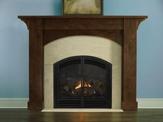 1000 Images About Family Room On Pinterest Direct Vent Fireplace Fireplaces And Napoleon