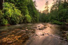 Georgia Cabins - Rosewater | Morning Breeze Cabin Rentals