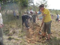 Piantare alberi in Africa