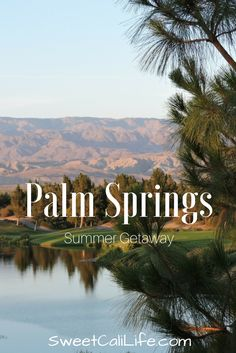 Palm Springs it's a great summer destination. Click to see what great adventures are waiting for you there!