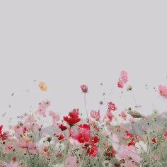 Lo que tengo ahora es calma, y me costó muchas tormentas encontrarla Lo que tengo ahora es calma, y me costó muchas tormentas encontrarla. Porque a veces, no basta con pasar de página o cambiar de libro, la auténtica sabiduría está en reinterpretar lo que ya está escrito y entender además que cuando hay calma en tu interior, la adversidad solo es parte del paisaje.