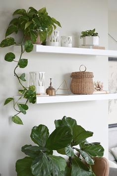 indoor plants design in your interior make your home more beautiful 50 House Plants Decor, Plant Decor, Fake Plants Decor, Plant Wall, Hanging Plants, Living Room Decor, Bedroom Decor, Wall Decor, Bedroom Green