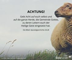 Achtung! | Lies den Bibelvers im Kontext auf #BibleServer nach | Apostelgeschichte 20,28