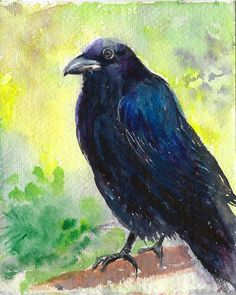 Check out this item in my Etsy shop https://www.etsy.com/listing/504727256/original-raven-spring-watercolor-bird