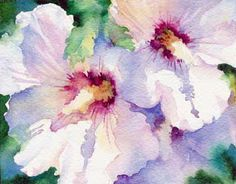 Rose of Sharon by Susan Crouch