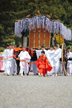 京都三大祭 葵祭 牛車 Japan,Kyoto,Aoi-Matsuri Festival