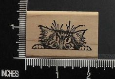 FUNNY CAT PEEKING UP OVER SOMETHING rubber stamp BY BIBLICAL IMPRESSIONS