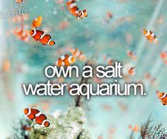 With crazy exotic fish... I love my aquarium!!
