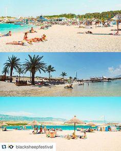 One of the great festivals this season is held for the fist time at all major clubs on Zrce beach - Aquarius Kalypso Noa and Papaya! Follow @blacksheepfestival for more info and news :) #blacksheepfestival #bsf2016 #zrce2016 #festival #aquarius #kalypso #noa #papaya #zrce #zrcebeach #islandofpag #croatia #beach #paradise #summer by clubpapaya More Zrce stuff at http://zrce.eu