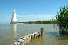 Neusiedlersee - Don't miss it while attending the World Congress of #musictherapy 2014 in Austria #WCMT2014  http://wcmt2014.wordpress.com