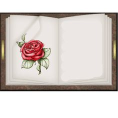 ️*.:。✿*✿✿.:。✿*✿.。.:*✿.✿・。.:* Open Book, Ribbon Embroidery, Diy Home Decor, Cabinets, Books, Frames, Scrapbooking, Beautiful, Moldings