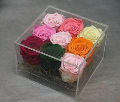 Flowers of Soul: 9 trandafiri nemuritori in cutie transparenta cu capac