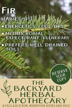 The Backyard Herbal Apothecary Fir clears the lungs and relieves stubborn congestion. Fir is the perfect herbal remedy for the common cold. Fir clears the lungs and relieves stubborn congestion. Fir is the perfect herbal remedy for the common cold. Home Remedies For Spiders, Cold Home Remedies, Home Remedies For Hair, Natural Health Remedies, Herbal Remedies, Holistic Remedies, Health And Wellness, Health Tips, Leg Cramps