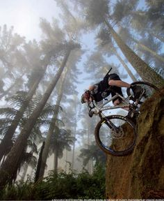I love New Zealand. The trees are tall and the tracks are steep! #mtb #mountainbiking #newzealand