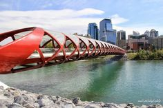 Anh's Photography #model #landscape #photography #portrait #calgary #canada #canadiangirl #yyc #downtown #citygirl #sexy #fashion #peacebridge #architecture #sun #summer #buildings #river