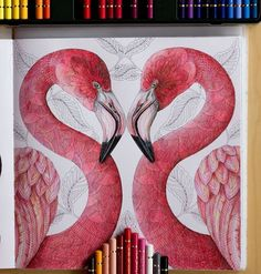 Instagram media by zuzka.hanova - Flamingos are probably done :-) I still have…