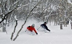Japan is the king of powder