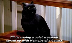 Pin for Later: 39 Salem Saberhagen Quotes You Should Start Using Immediately When Your Friend Asks If You Want to Rage on Friday Night