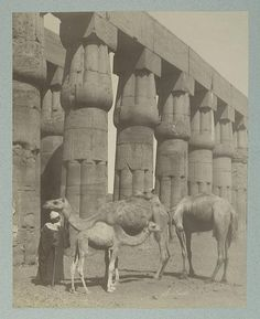 https://flic.kr/p/5JPmJe | Temple Domenophis, Louxor | Digital ID: 81491. Beato, Antonio -- Photographer. [186-188-]   Source: [Collection of photographs of Egypt and Nubia.] / A. Beato and others. (more info)   Repository: The New York Public Library. Photography Collection, Miriam and Ira D. Wallach Division of Art, Prints and Photographs.   See more information about this image and others at NYPL Digital Gallery. Persistent URL: digitalgallery.nypl.org/nypldigital/id?81491   Rights Info…