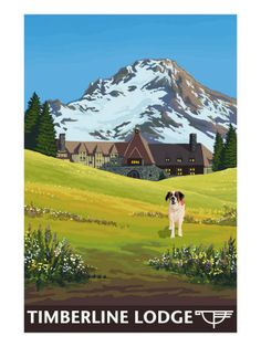 Timberline Lodge, Oregon ~ in Summer