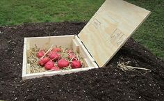 5 Root Cellar Alternatives That Are Low-Cost And Easy-To-Make