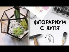 DIY: Цветочные террариумы. Геометрический флорариум своими руками - YouTube