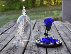 Passer godt for allergikere Glass Vase, Table Decorations, Furniture, Home Decor, Interior Design, Home Interior Design, Arredamento, Dinner Table Decorations, Home Decoration