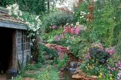 A rustic shed and gorgeous Spring garden