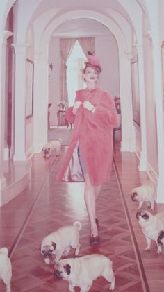 puppies and pink! pugs have never looked so glamorous. Linda Evangelista by Steven Meisel PUGS Linda Evangelista, Natalie Clifford Barney, Floral Lampshade, Fabric Lampshade, Photo Animaliere, Fu Dog, Ellen Von Unwerth, Fru Fru, Annie Leibovitz
