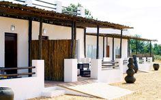 Big five Safari close to Cape Town. Inverdoorn and Iziba Safari Lodge. Game Reserve South Africa, African Buffalo, Private Games, Luxury Accommodation, Cape Town, Safari, Boutique Hotels, Pergola, Outdoor Structures