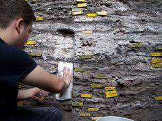 Study researcher Christopher Miller sampling sediments containing the ancient mattresses.