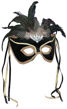 Black Feather Masquerade Mask from Buycostumes.com