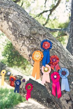 DIY ribbon medallions...cute favor for horse lover party