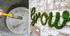 Graffiti: The Coolest DIY Project Ever Here is a recipe for how to make a piece of beautiful and soft moss graffiti.Here is a recipe for how to make a piece of beautiful and soft moss graffiti.