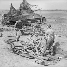 Empty 75mm HE shell cases being collected from Royal Tank Regiment Sherman tanks in use in the indirect artillery role in the Anzio bridgehead 5 May 1944.
