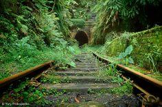 Abandoned railway station, Helensburgh, NSW, Australiaby-yury-